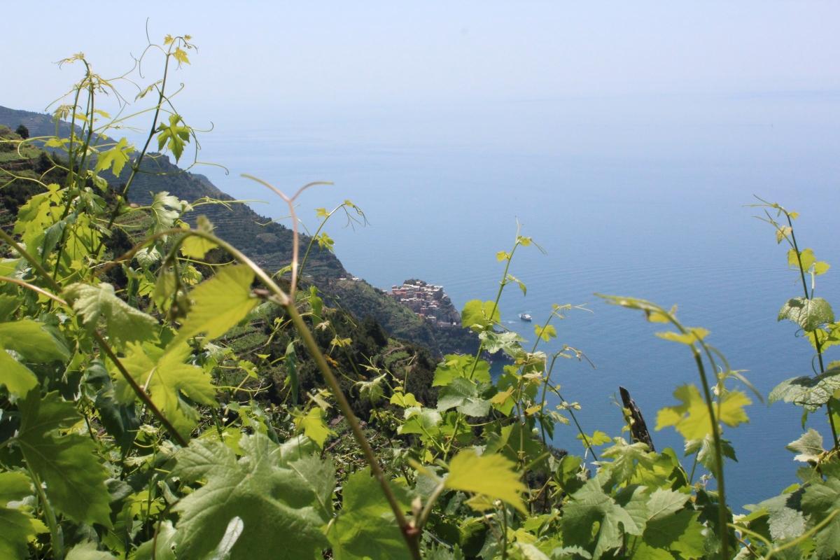 Eine Woche an der ligurischen Küste