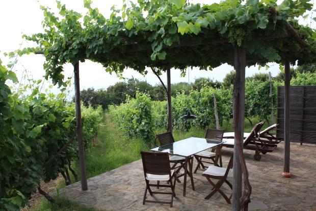 Traumhafte Terrasse der Unterkunft Vignazzurra