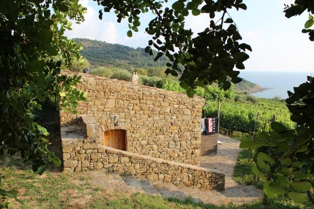 Steinhäuschen umgeben von Weinreben