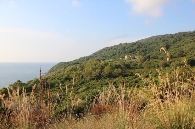 Blick auf das Anwesen Vignazzurra