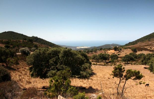 Ausblick auf Dünenlandschaft